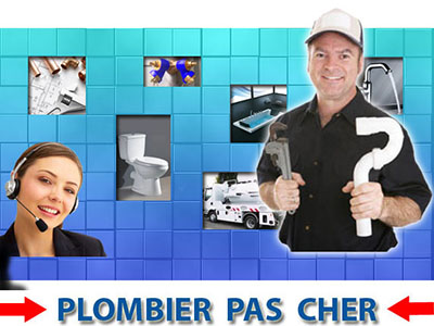 Canalisation Bouchée Fontenay Saint Pere 78440