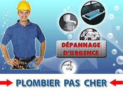 Toilette Bouché Chatenay en France 95190